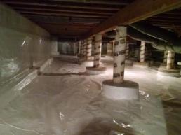 mold area