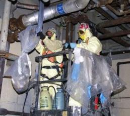 asbestos cleanup team