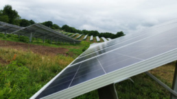 Independence solar farm